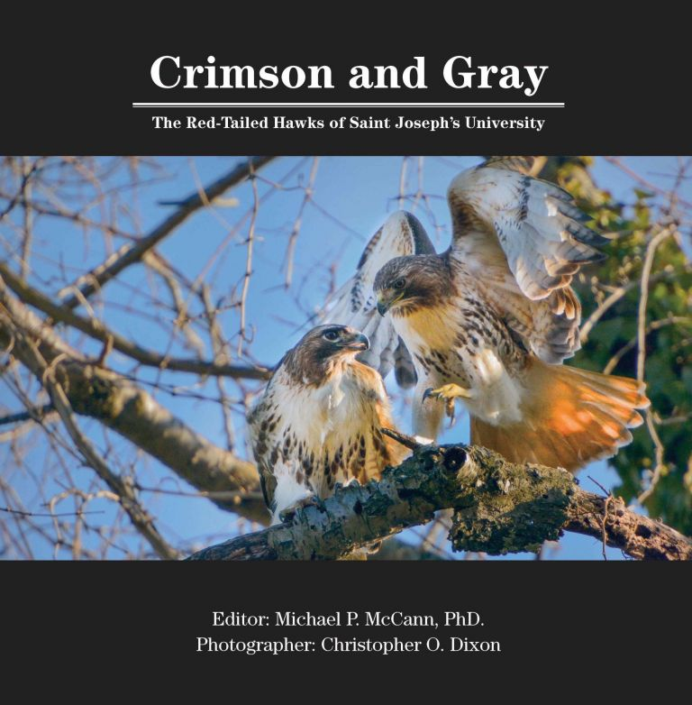Crimson and Gray: The Red-Tailed Hawks of Saint Joseph's University. Michael P. McCann, Christopher O. Dixon.